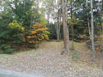 Residential Lots & Land Sold: 8997 Chippewa Trail