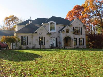 Niles Single Family Home For Sale: 70874 Cambridge Court