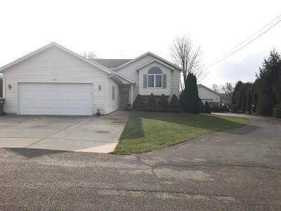 Allendale Single Family Home For Sale: 7446 Osborn Street
