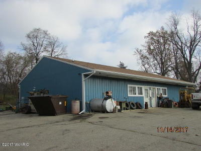Hillsdale County Commercial For Sale: 7424 Moscow Road