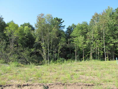 Holland, West Olive Residential Lots & Land For Sale: 14493 Woodbrook Drive