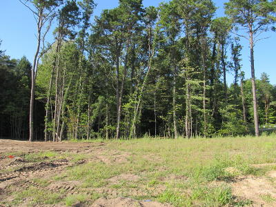 Holland, West Olive Residential Lots & Land For Sale: 2940 Ternberry Lane