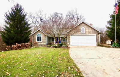 Hudsonville Single Family Home For Sale: 6313 40th Avenue
