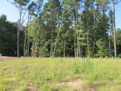 Holland, West Olive Residential Lots & Land For Sale: 2952 Ternberry Lane