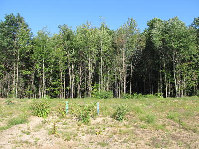 Holland, West Olive Residential Lots & Land For Sale: 2992 Fransworth Drive