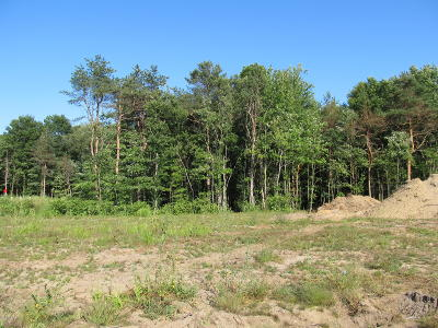 Holland, West Olive Residential Lots & Land For Sale: 3040 Fransworth Drive