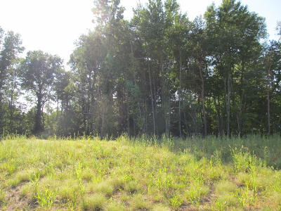 Holland, West Olive Residential Lots & Land For Sale: 3029 Fransworth Drive