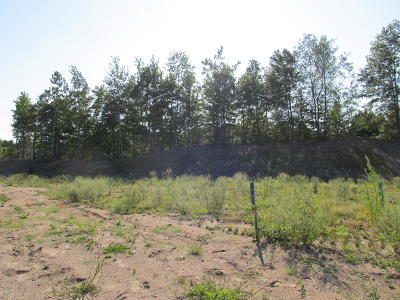 Holland, West Olive Residential Lots & Land For Sale: 2981 Fransworth Drive