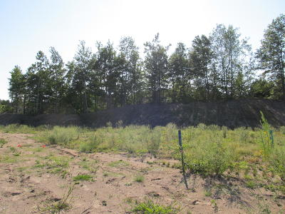 Holland, West Olive Residential Lots & Land For Sale: 2969 Fransworth Drive