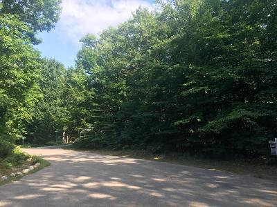 Oceana County Residential Lots & Land For Sale: Unit 73 Slalom Street