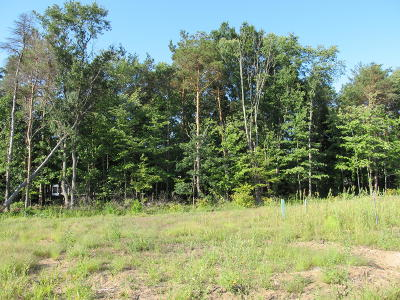 Holland, West Olive Residential Lots & Land For Sale: 14571 Jamesway Avenue