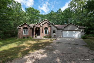 Allegan County Single Family Home For Sale: 3840 Silver Creek Drive
