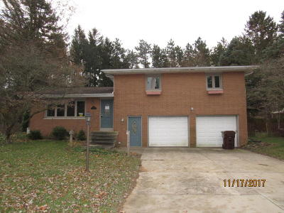 Bridgman Single Family Home For Sale: 3758 Linke Road