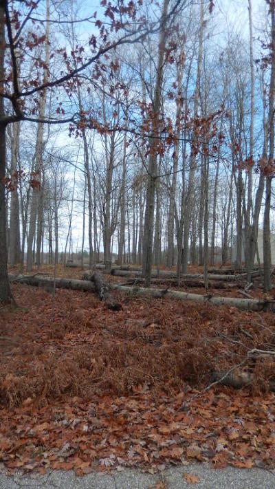 Canadian Lakes Residential Lots & Land For Sale: 9050 Timberlane Drive #360