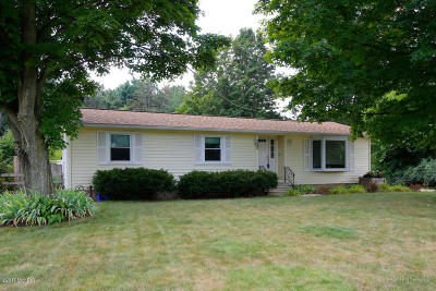 Kalamazoo County Single Family Home For Sale: 23849 Red Arrow Highway