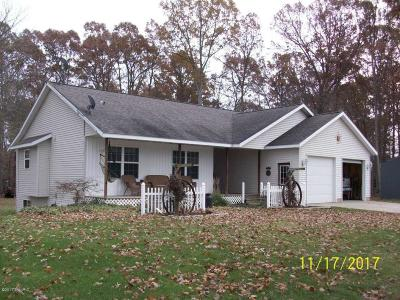 Allegan County Single Family Home For Sale: 3489 Dodges Run