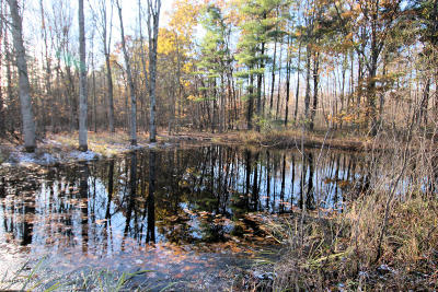 Newaygo County Residential Lots & Land For Sale: 1233 W North River Drive