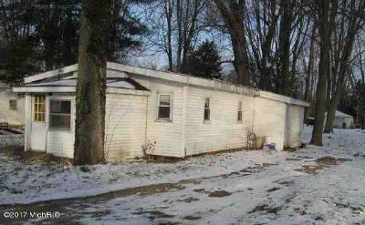 Van Buren County Single Family Home For Sale: 46800 East Drive