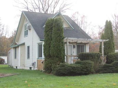 Kalamazoo Single Family Home For Sale: 1007 Parker Avenue