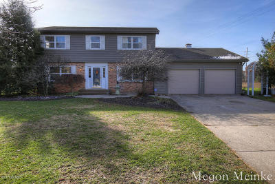 Belding Single Family Home For Sale: 1599 Louva Court