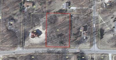 Grand Rapids Residential Lots & Land For Sale: 3851 5 Mile Road NE