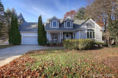Spring Lake Single Family Home For Sale: 15130 Wildfield Dr