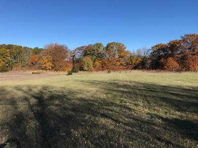 Allegan County Residential Lots & Land For Sale: Parcel B 147th Avenue