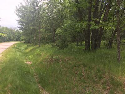 Newaygo County Residential Lots & Land For Sale: W. Pierce Drive