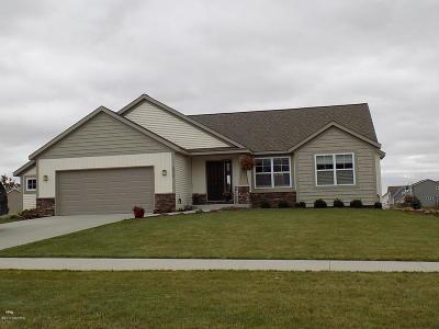Zeeland Single Family Home For Sale: 6916 Groveside Drive