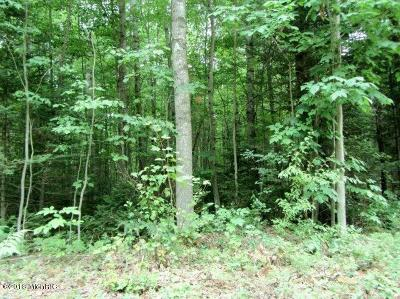 Osceola County Residential Lots & Land For Sale: 00 9 Mile Road