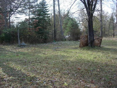 Manistee County Residential Lots & Land For Sale: 14163 Coates Highway