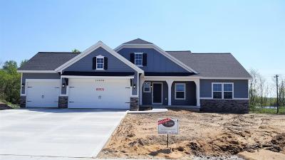 Allendale Single Family Home For Sale: 10856 Marsh
