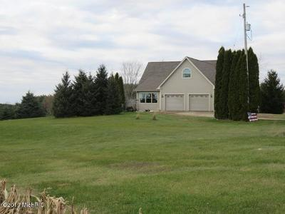 Branch County, Hillsdale County Single Family Home For Sale: 2360 S Allen Road N