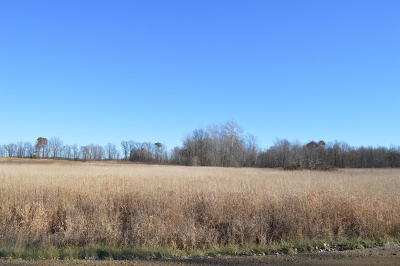 Berrien County Residential Lots & Land For Sale: V/L Bailey Road