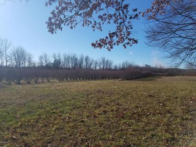 Van Buren County Residential Lots & Land For Sale: 25762 76th Street