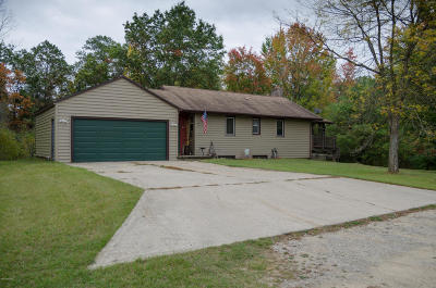 Newaygo County Single Family Home For Sale: 1865 E Pine Hill Rd