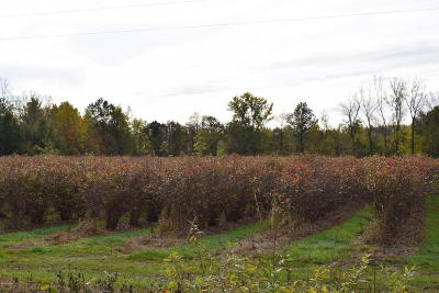 Van Buren County Residential Lots & Land For Sale: 51661 28th Avenue