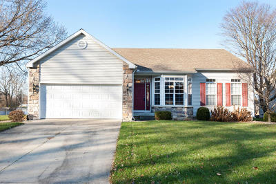 Berrien County, Cass County, Van Buren County Single Family Home For Sale: 62578 Diamond View Drive