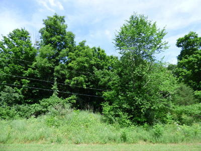 Niles Residential Lots & Land For Sale: 1919 Riverside Road