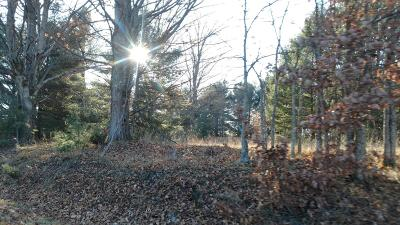 Manistee County Residential Lots & Land For Sale: 12450 Nine Mile Road