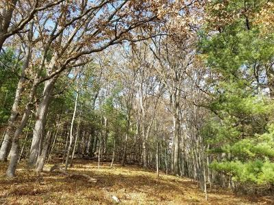Manistee County Residential Lots & Land For Sale: Condon Road