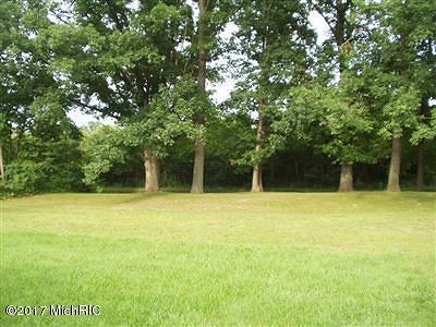 Allegan County Residential Lots & Land For Sale: 386 49th Street
