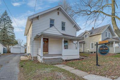 Grand Rapids Single Family Home For Sale: 531 Brooks Street