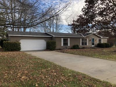 Van Buren County Single Family Home For Sale: 67258 Becky Lane