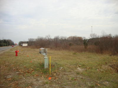 Bridgman Residential Lots & Land For Sale: 1 Red Arrow Highway