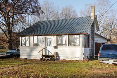 Allegan Single Family Home For Sale: 249 Park Drive