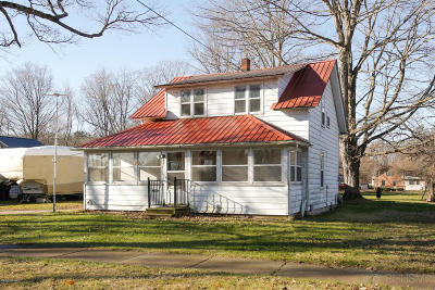 Allegan County Single Family Home For Sale: 257 Park Drive