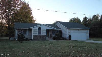 Muskegon Single Family Home For Sale: 3619 Strand Road
