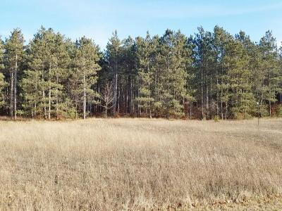 Manistee County Residential Lots & Land For Sale: 31 Acres North Manistee County Line Road