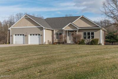 Kalamazoo County Single Family Home For Sale: 7227 Owen Hills Dr
